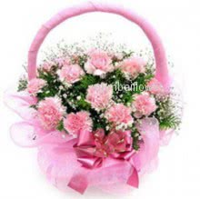 Basket of 25 pink carnation nicely decorated with greens