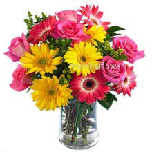 Glass vase with 25 Mixed roses and gerberas nicely decorated with greens