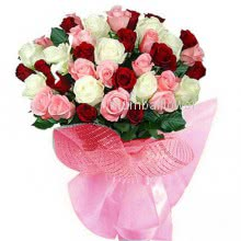 Bunch of 40 Pink White Red colored roses nicely decorated with ribbons