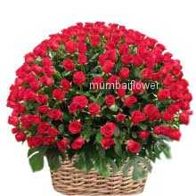Basket of 150 red roses nicely decorated with fillers and greens