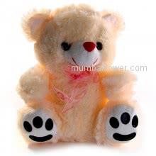 Soft Toys Teddy Peach Color with personalised message card. <br><br> Size: 9.00 Inch Height approximately.