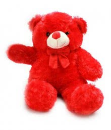 Teddy Red 15