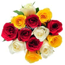 Bunch Of 12 Mixed Colored Roses with Plastic Cellophane packing