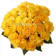 Bunch of 30 Yellow Roses Plastic Cellophane packing