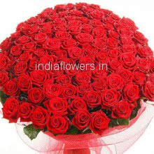 Bunch of 100 Red Roses nicely decorated with Paper Packing