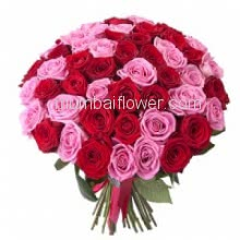 Bunch of 60 Red and Pink Roses with Paper Packing