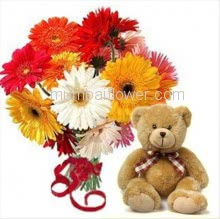 Bunch of 12 Mixed Colored Gerberas with Plastic Cellophane Packing and 15 Inch Teddy