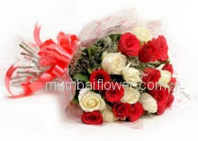 Bunch Of 30 Red and White Roses with Plastic Cellophane Packing