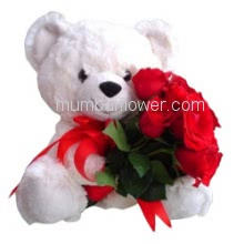Bunch of 6 Red Roses with Plastic Cellophane Packing and 6 inch Teddy