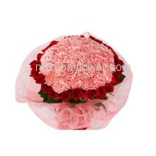 Bunch of 20 Red Roses and 30 Pink Carnation nicely decorated with fillers and Paper Packing