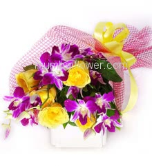 Bunch of 6 Yellow Roses and 5 Purple Orchids with Plastic Cellophane packing Orchid n Roses Bouquet
