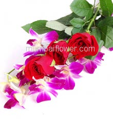 Bunch of 5 Red Roses and 2 Purple Orchids with Plastic Cellophane packing, Low cost Small Orchids n Roses