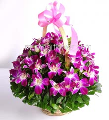 Basket of Orchids nicely decorated with greens.. Please note: This Item not available all the time.