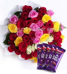 Bunch of 50 Mixed Color Roses nicely decorated with fillers ribbons and 5pc Cadbury Dairymilk of Rs.25 each