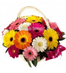 Basket of 20 Mixed Color Gerberas nicely decorated with fillers and greens.