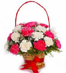 Basket of 25 Pink and White Carnation with fillers and greens