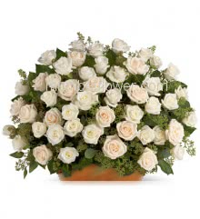 Basket of 75 White Roses nicely decorated with fillers and greens